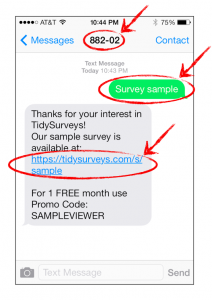 TidySurveys_SMS Text Message_iPhone